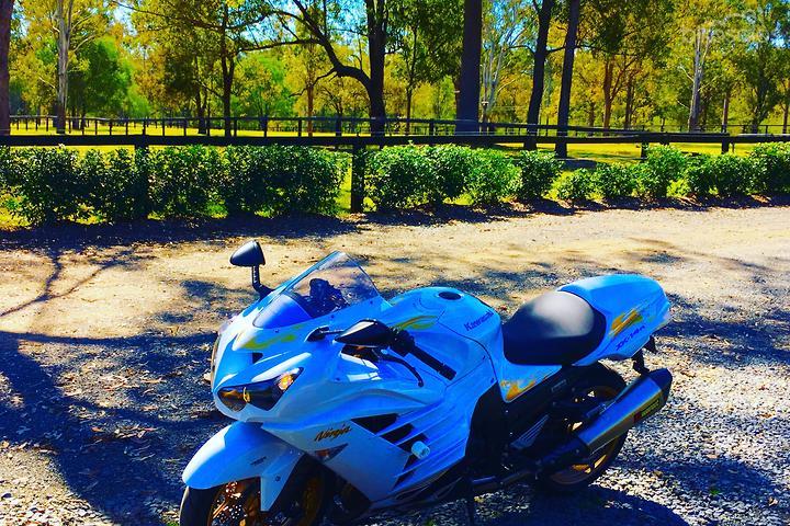 Kawasaki Ninja ZX-14R ABS Special Edition (ZX1400FB) Motorcycles for
