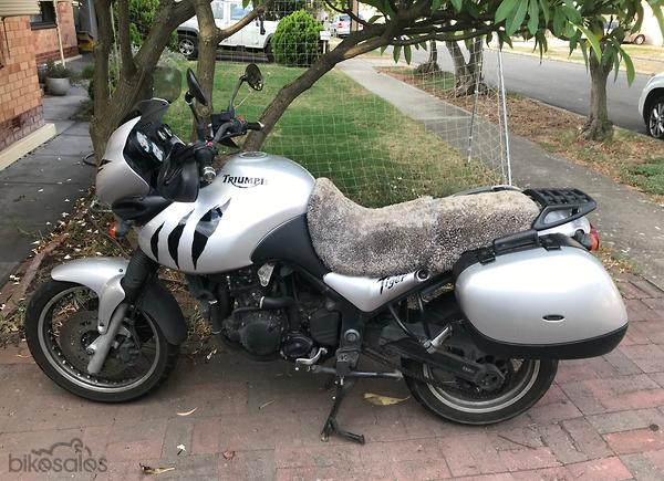 Triumph Tiger 955i Motorcycles For Sale In South Australia